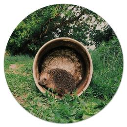 """Коврик для мышки (круглый) """"Милый еж"""" - животные, мило"""