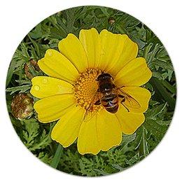 """Коврик для мышки (круглый) """"Медовое солнце."""" - лето, цветок, солнечный цветок, насекомое на цветке, макро мир"""