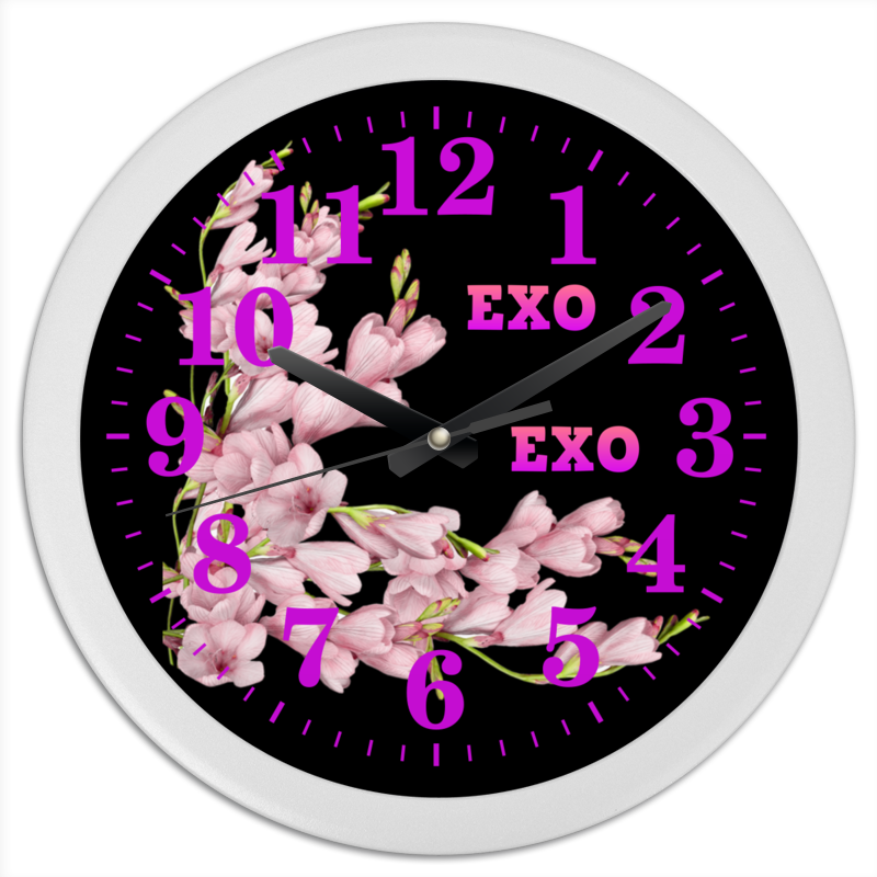 Printio Exo розовые цветы худи print bar розовые цветы
