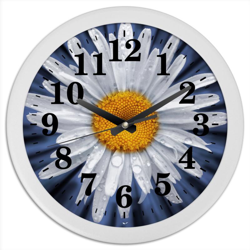 Часы круглые из пластика Printio Часы ромашка садовая ромашка