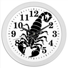 "Часы круглые из пластика ""Скорпион (24.10-21.11)"" - крутой, оригинальный, стильный, скорпион, биология"
