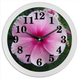 """Часы круглые из пластика """"Цветущая долина"""" - лето, алтай, горный алтай, цветущая долина, долина цветов"""