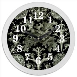 """Часы круглые из пластика """"Лишайники (Lichenes, Ernst Haeckel)"""" - хэллоуин, хеллоуин, красота форм в природе, эрнст геккель, лишайники"""