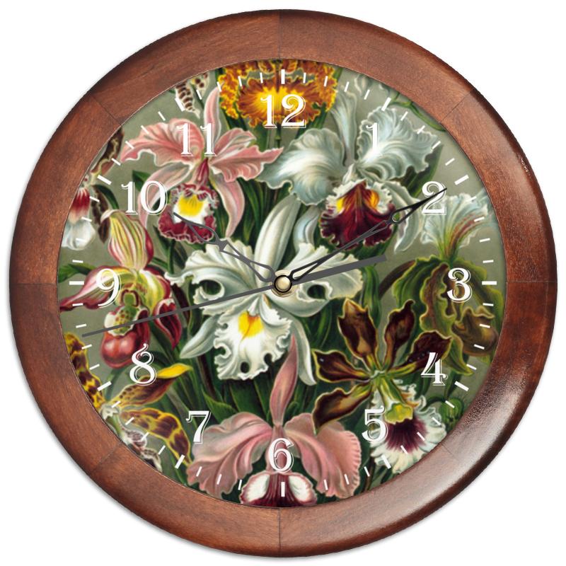 Часы круглые из дерева Printio Орхидеи (orchideae, ernst haeckel) подарочная коробка большая пенал printio орхидеи orchideae ernst haeckel