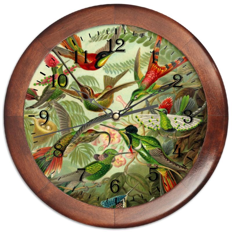 Часы круглые из дерева Printio Колибри (trochilidae, ernst haeckel) пазл 43 5 x 31 4 408 элементов printio колибри trochilidae ernst haeckel