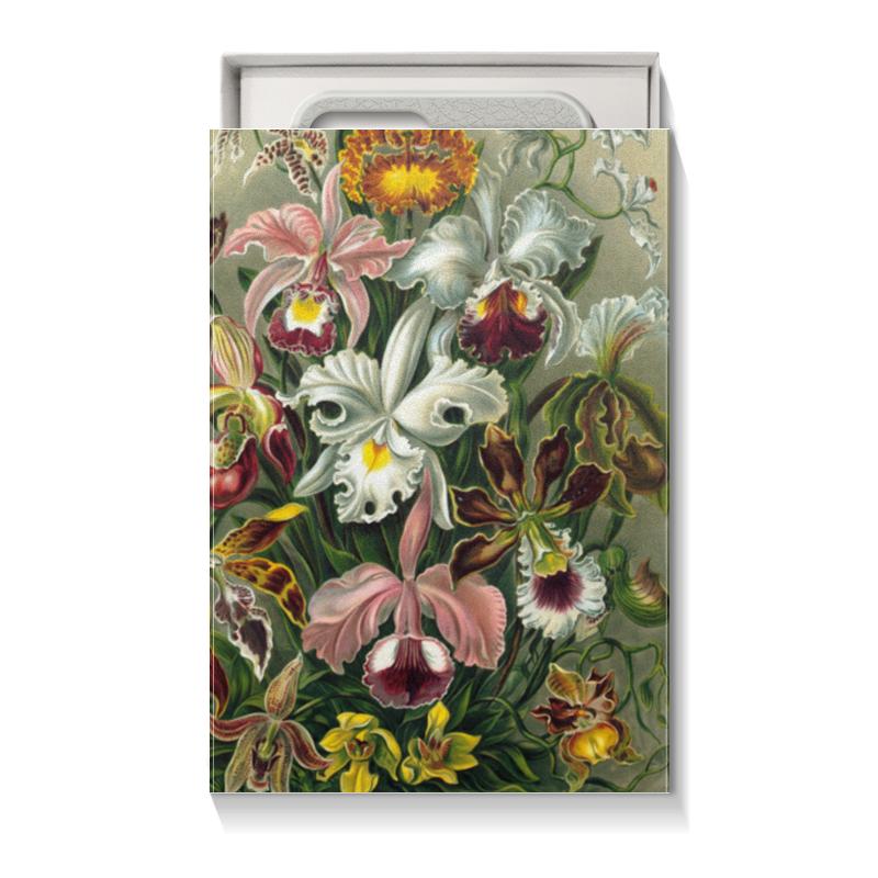 Коробка для чехлов Printio Орхидеи (orchideae, ernst haeckel) подарочная коробка большая пенал printio орхидеи orchideae ernst haeckel