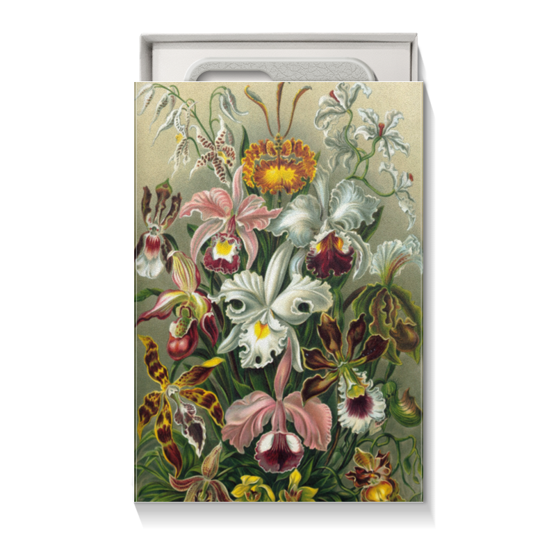 Коробка для чехлов Printio Орхидеи (orchideae, ernst haeckel) коробка для чехлов printio для телефона любимой жене