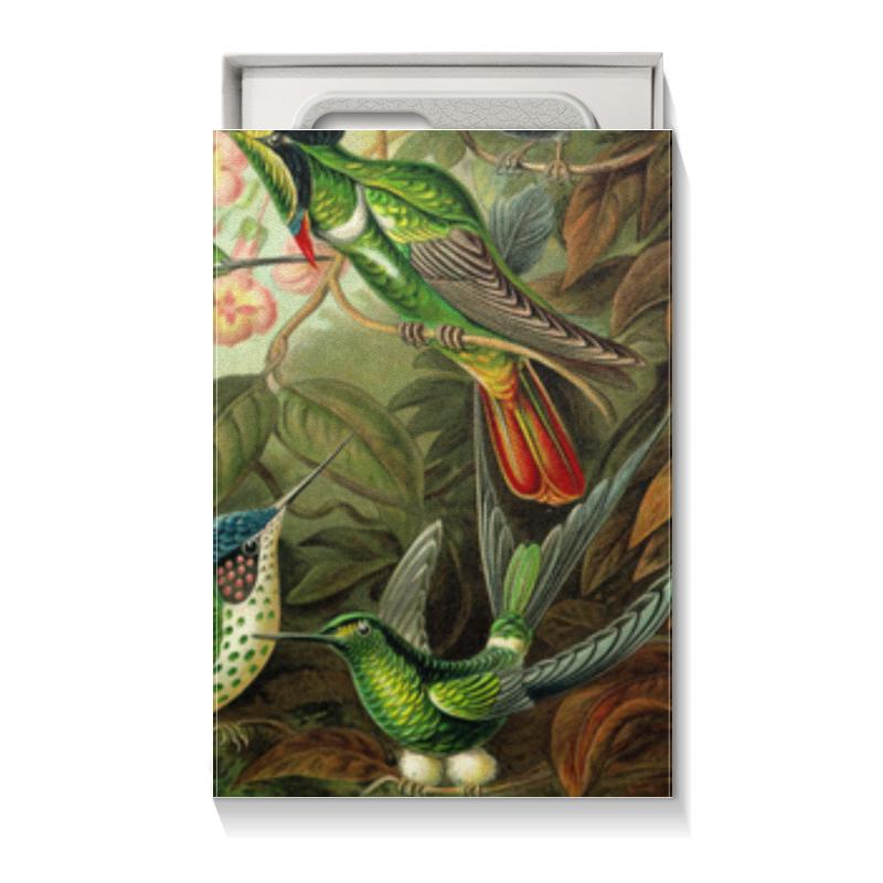 Подарочная коробка малая (пенал) Printio Колибри эрнста геккеля chokocat любимой маме открытка с шоколадом 20 г