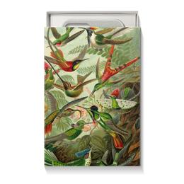 "Коробка для чехлов ""Колибри (Trochilidae, Ernst Haeckel)"" - 8 марта, птицы, картина, бабушка, эрнст геккель"