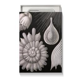 """Коробка для чехлов """"Globigerina, Ernst Haeckel"""" - арт, черно-белый, ракушка, красота форм в природе, эрнст геккель"""