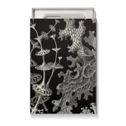 """Коробка для чехлов """"Лишайники (Lichenes, Ernst Haeckel)"""" - черно-белый, биология, красота форм в природе, эрнст геккель, лишайники"""