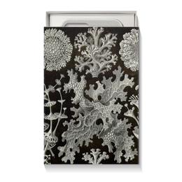 """Коробка для чехлов """"Лишайники (Lichenes, Ernst Haeckel)"""" - новый год, картина, черно-белый, красота форм в природе, эрнст геккель"""