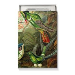 """Коробка для чехлов """"Колибри Эрнста Геккеля"""" - 14 февраля, 8 марта, птицы, картина, эрнст геккель"""