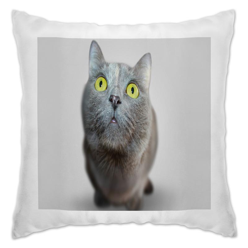 Подушка Printio Серый кот оранжевый кот подушка игрушка антистресс кот спортсмен