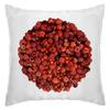 """Подушка """"Дикая малина"""" - красный, ягоды, малина, сладкий, аромат"""