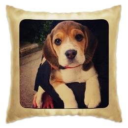 """Подушка """"I love dogs"""" - прикольные, в подарок, оригинально, cute, puppy"""