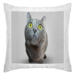 "Подушка ""Серый кот"" - кот, кошка, животные, котенок, коты"