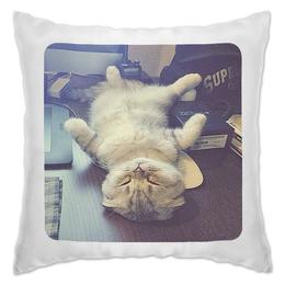 """Подушка """"Сладкие сны"""" - прикол, cat, funny, sleeping"""