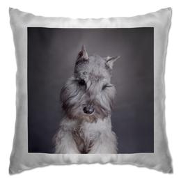 """Подушка """"Шнауцер"""" - стиль, популярные, в подарок, оригинально, девушке, cute, парню, щенки, puppy, шнауцер"""