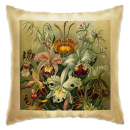 """Подушка """"Орхидеи (Orchideae, Ernst Haeckel)"""" - картина, орхидея, эрнст геккель, 14фев, 8мар"""