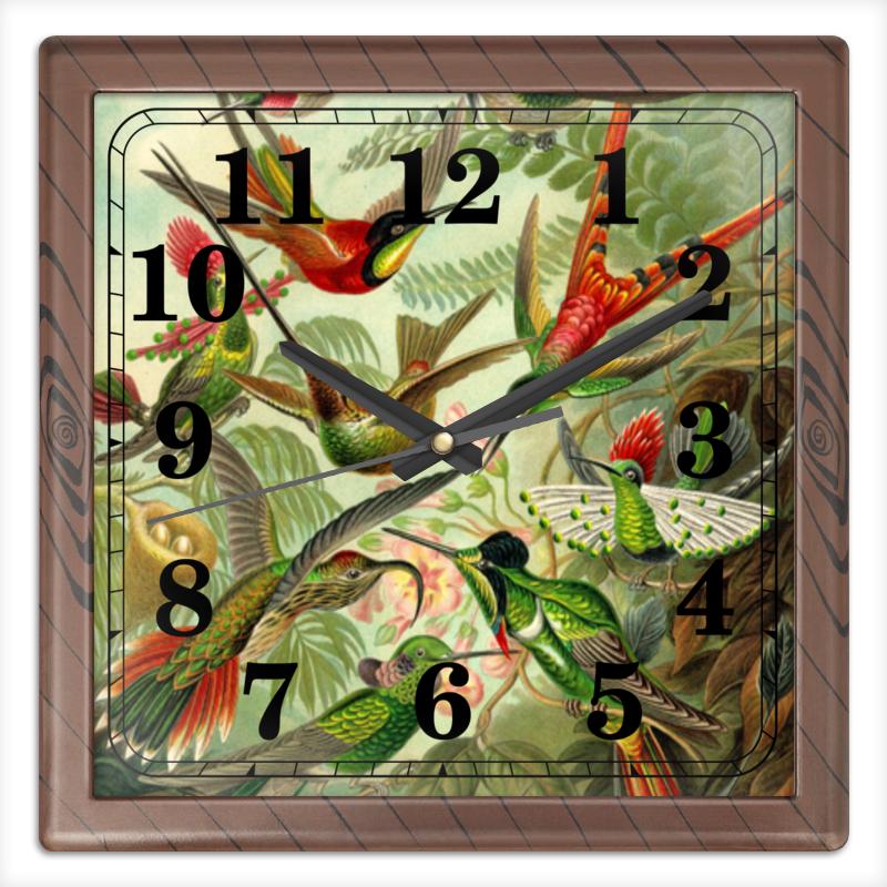 Часы квадратные из пластика (под дерево) Printio Колибри (trochilidae, ernst haeckel) chokocat любимой маме открытка с шоколадом 20 г
