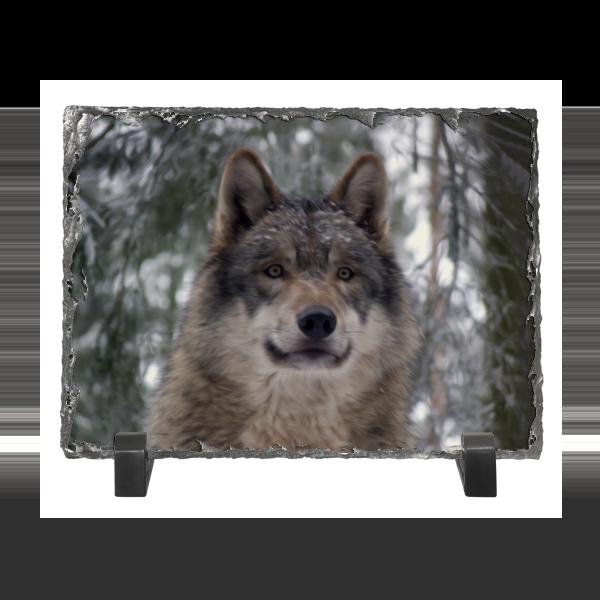 Каменная рамка Printio Волк в лесу колычев в голодный волк или герои городского дна