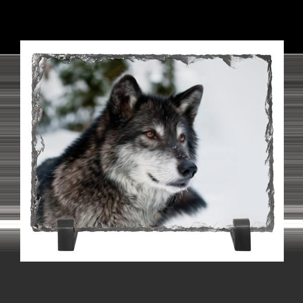 Каменная рамка Printio Серый волк худи print bar дьявольский волк