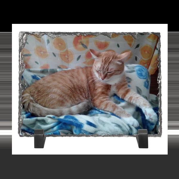 Каменная рамка Printio Спящий кот