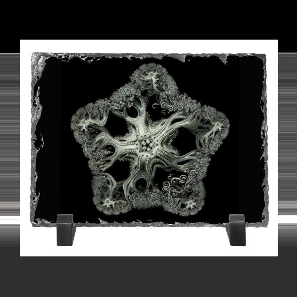 цена на Каменная рамка Printio Astrophyton darwinium эрнста геккеля