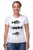 """Футболка Стрэйч (Женская) """"Коллекция рыб"""" - рыба, fish, рыбалка"""