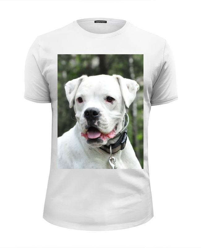Printio Aksa&boxer-co футболка wearcraft premium slim fit printio boxer need a house