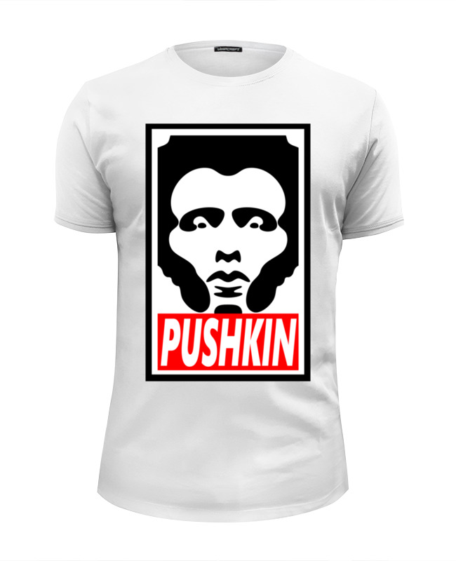 Printio Пушкин pushkin обей цена