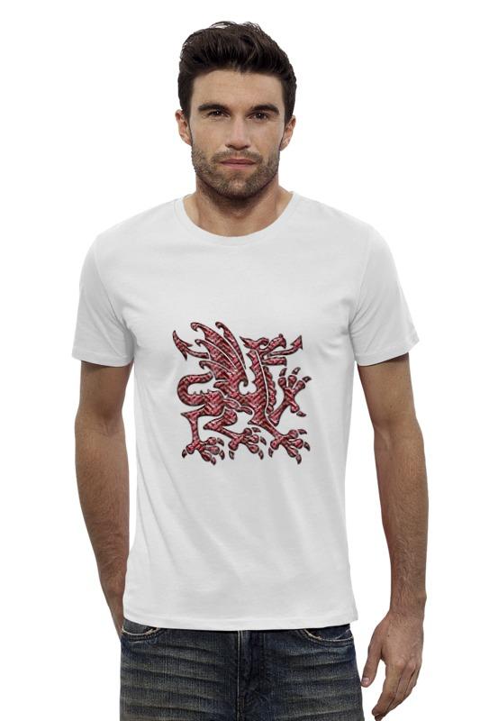 Футболка Wearcraft Premium Slim Fit Printio Дракон шелковый дракон