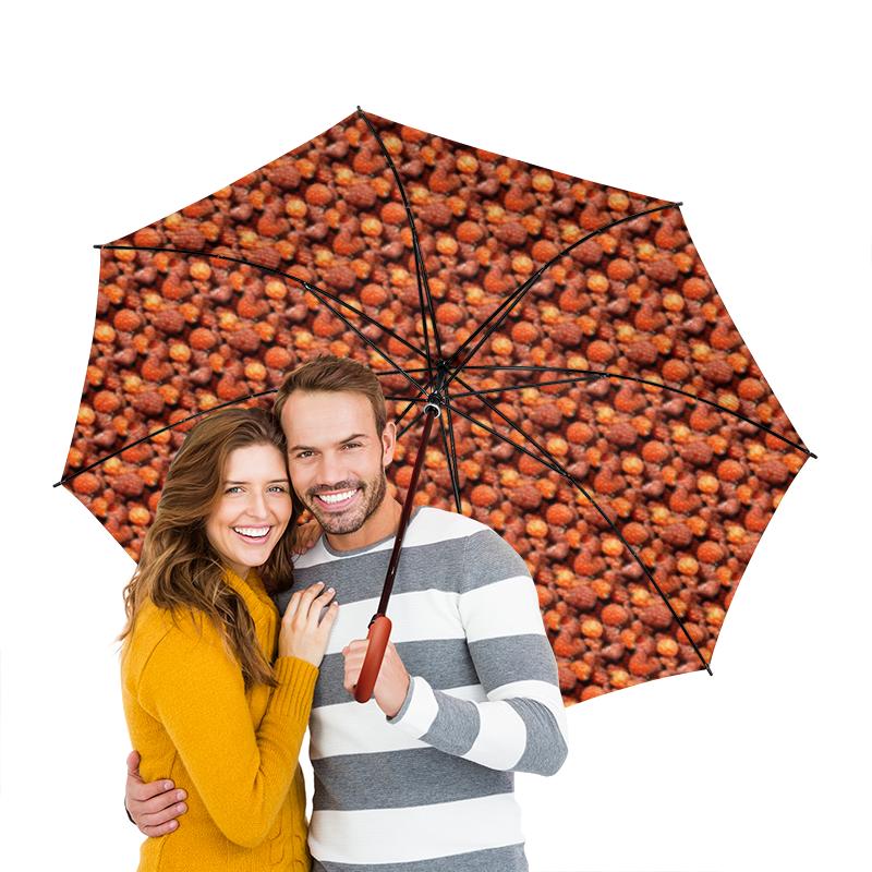Зонт-трость двусторонний с деревянной ручкой Printio Дикая малина
