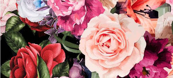 Цветочная коллекция